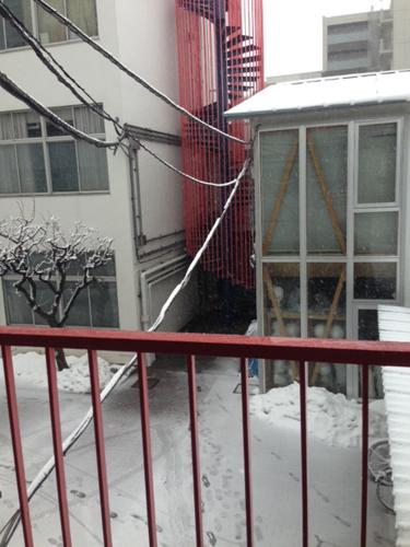 吉祥寺も雪!