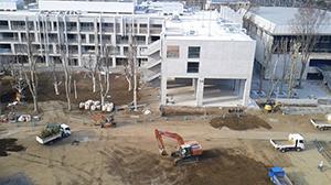 移植中の樹木、12号館から14号館南側中庭を望む。右側は体育館。3月27日。